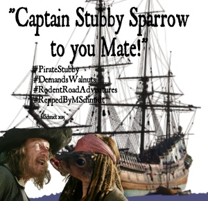 CaptainStubbySparrow28July2015