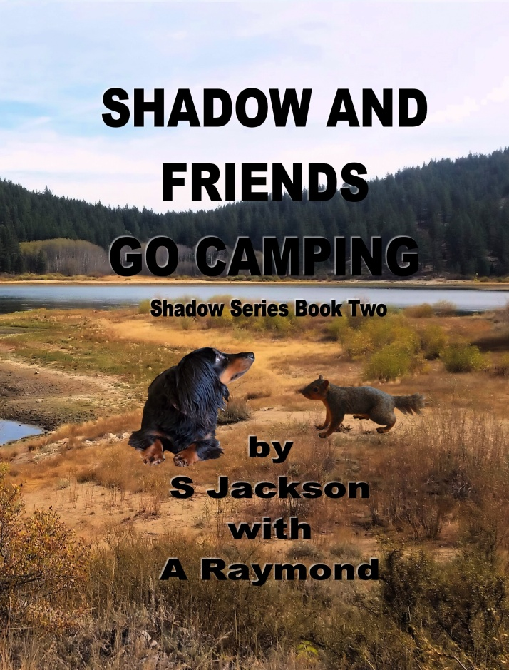 TEASER.Cover.ShadowAndFriendsGoCamping01Feb2016