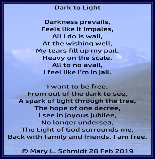 DarkToLight29Feb2019MarySchmidt